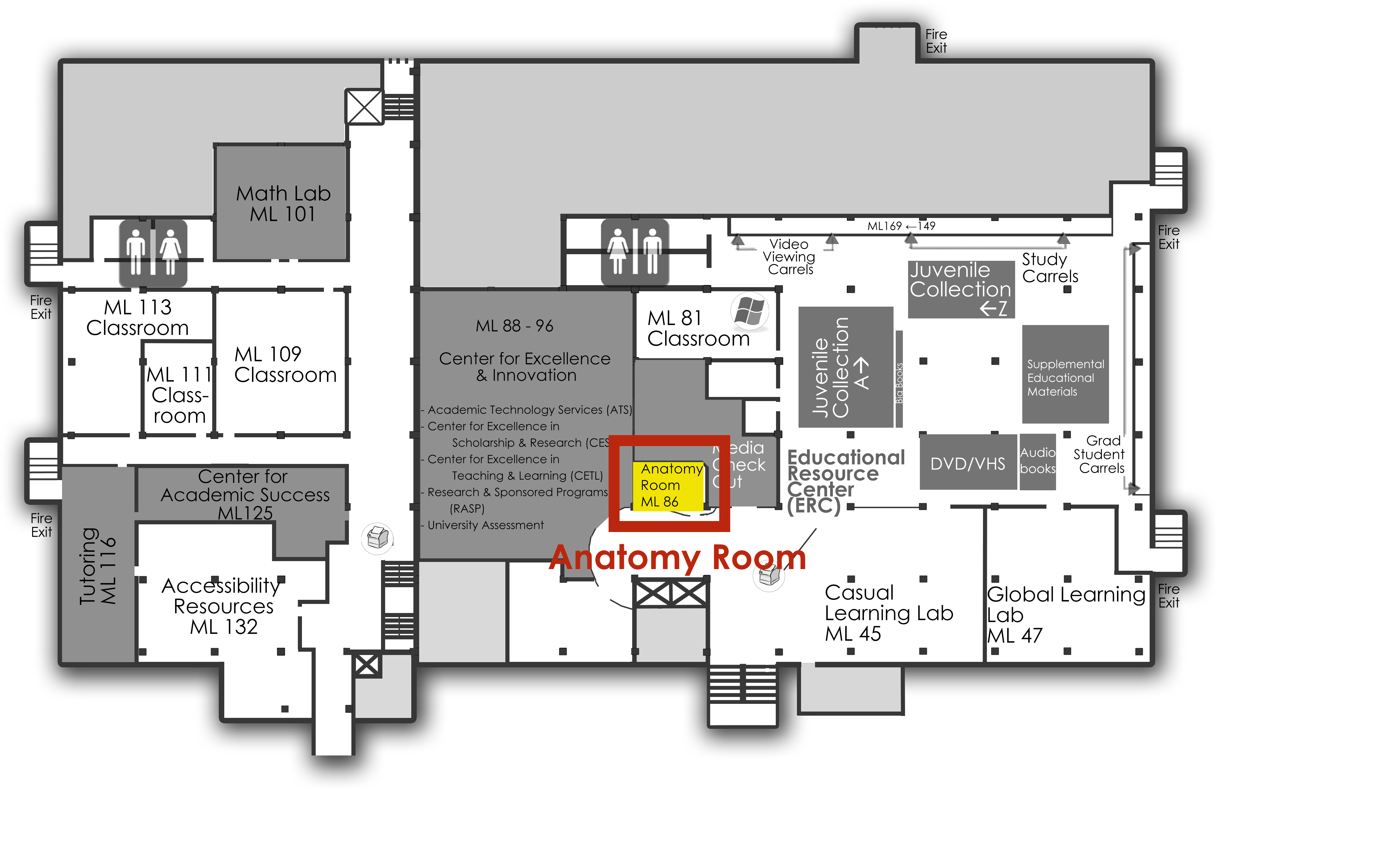Anatomy room is located in Memorial Library, lower level east, near the media counter
